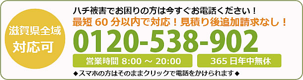 滋賀県蜂駆除・巣の撤去電話お問い合わせ「0120-538-902」