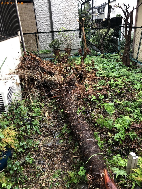 【大津市】庭木の回収・処分 お客様の声