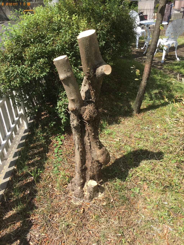 【草津市】切り終わった木の回収・処分ご依頼 お客様の声